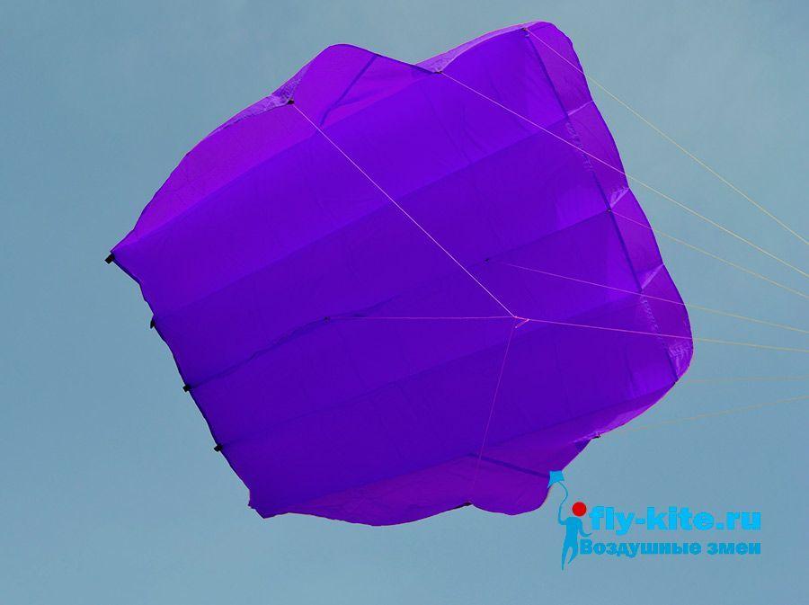 Leader 8.2 фиолетовый изображение 1