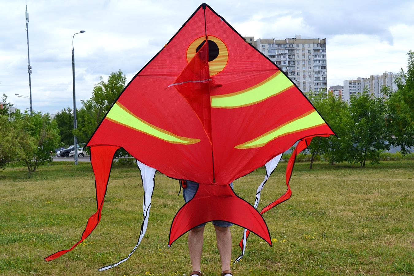 Рыба бабочка изображение 2