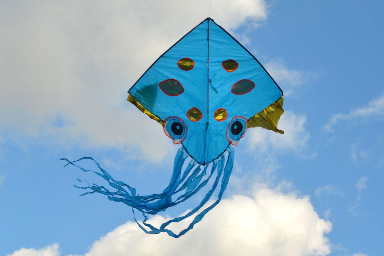Золотая медуза изображение 2