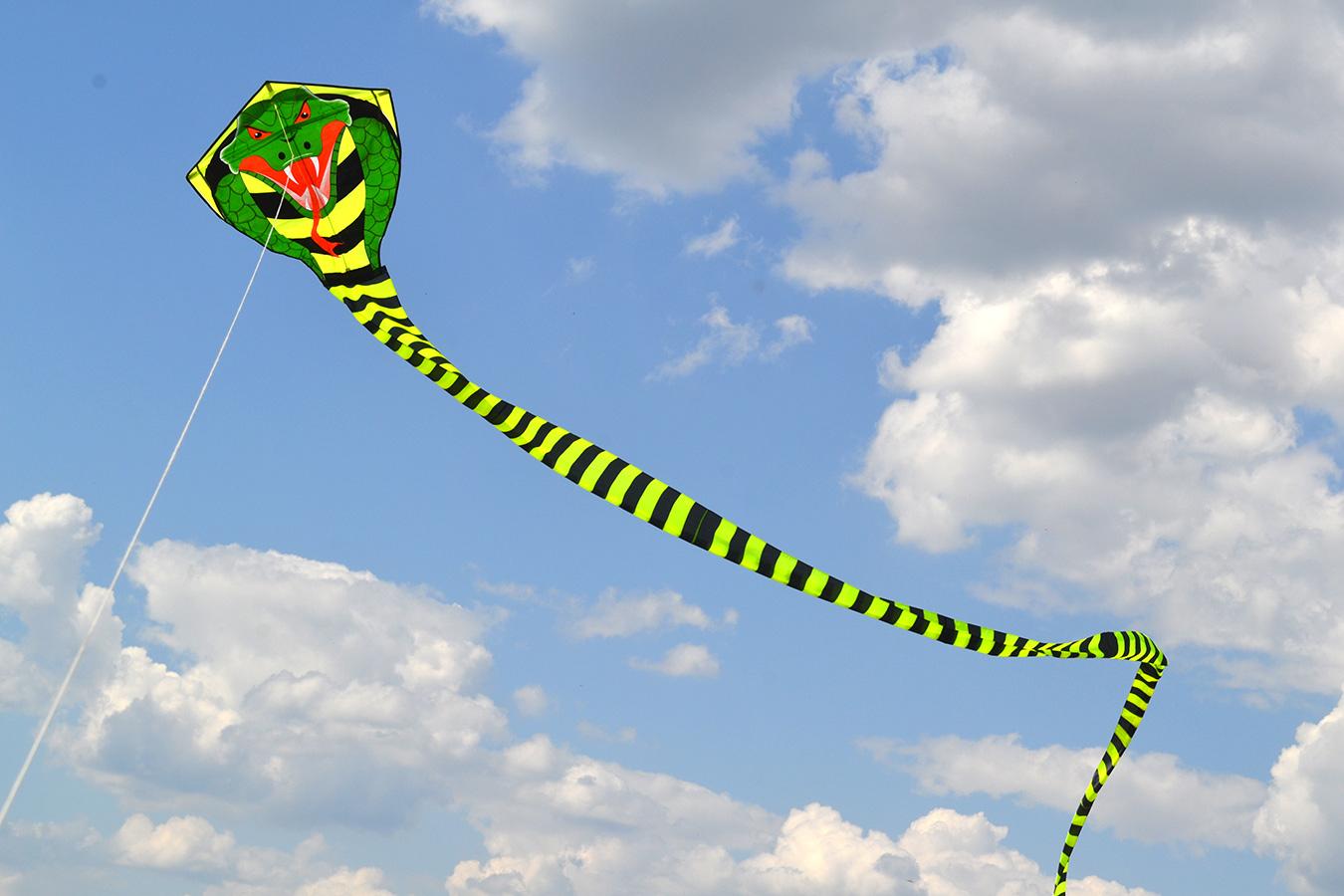 Огромная кобра изображение 1