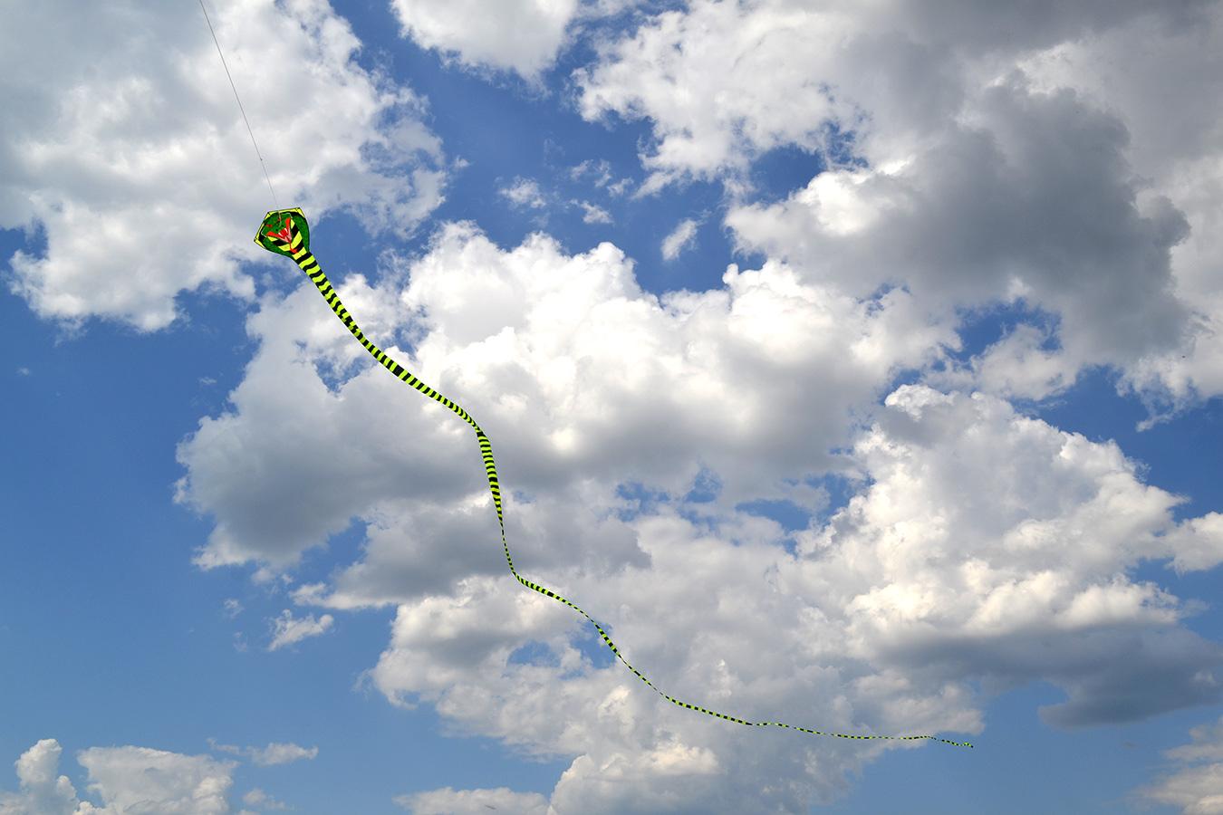 Огромная кобра изображение 2