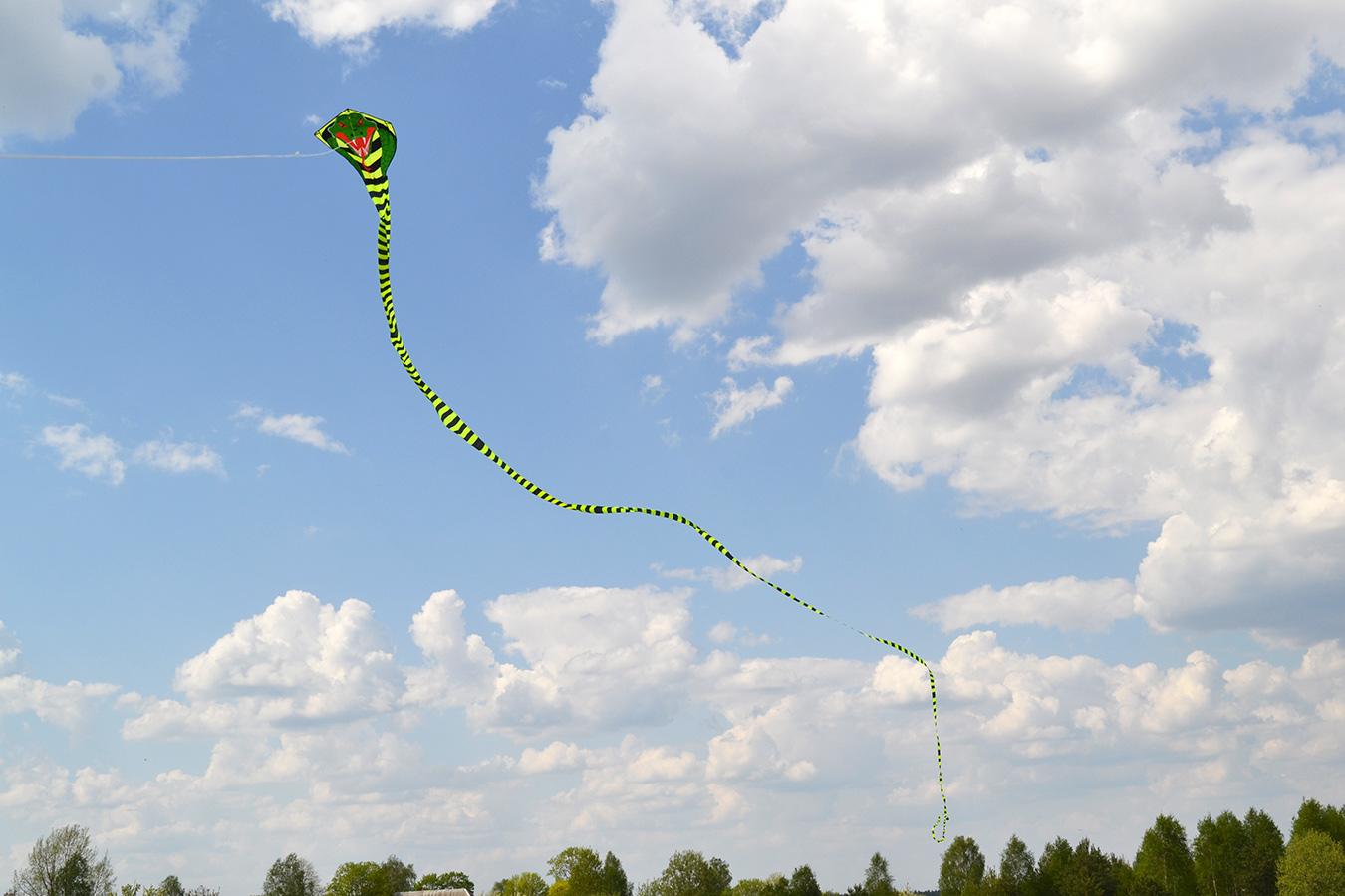 Огромная кобра изображение 4
