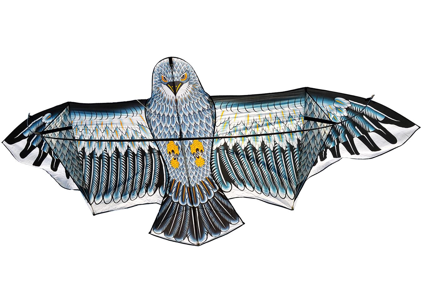 Гигантский Кондор, 6-и метровый воздушный змей [ZB517]