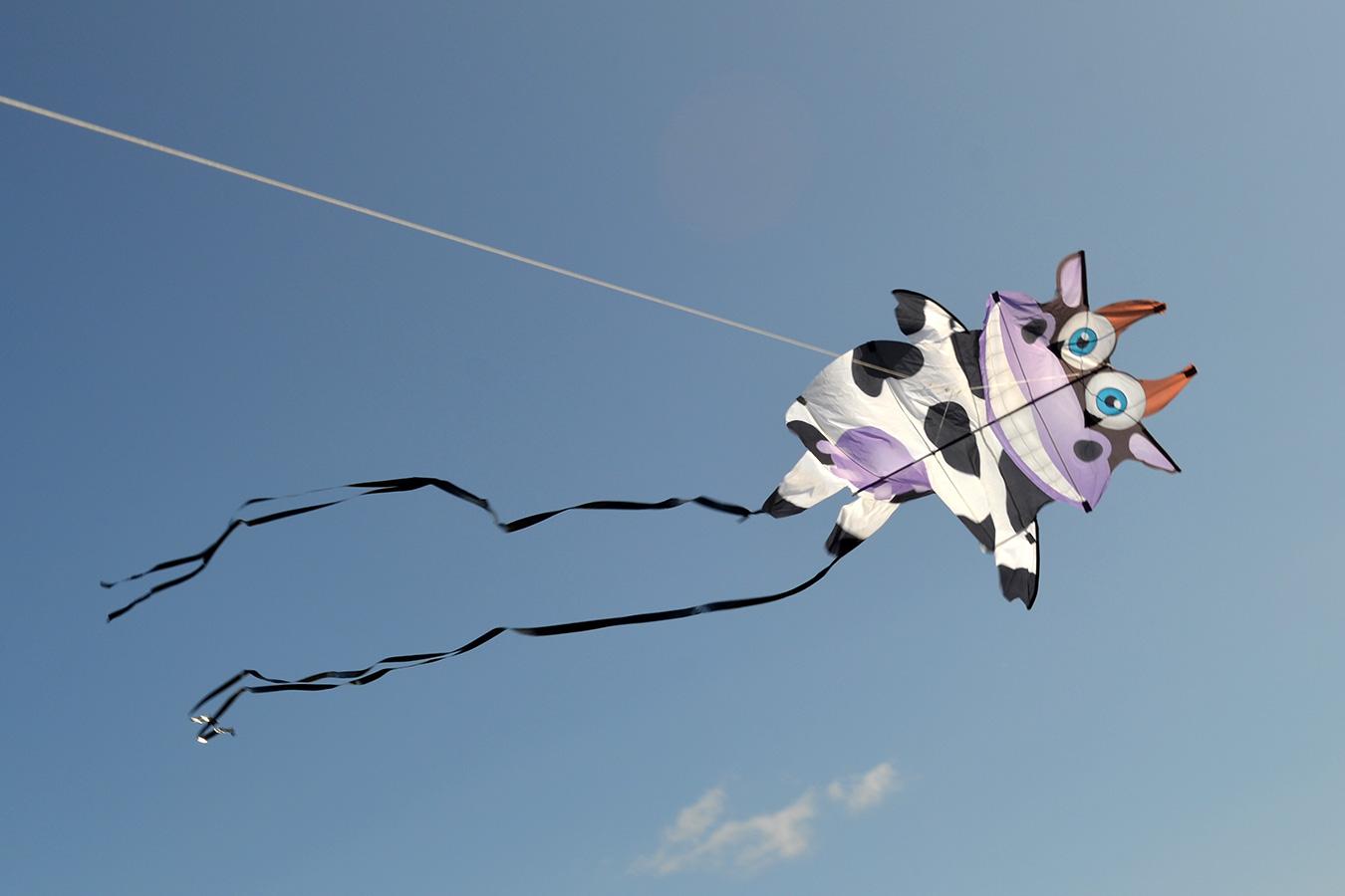 Танцующая Корова изображение 0