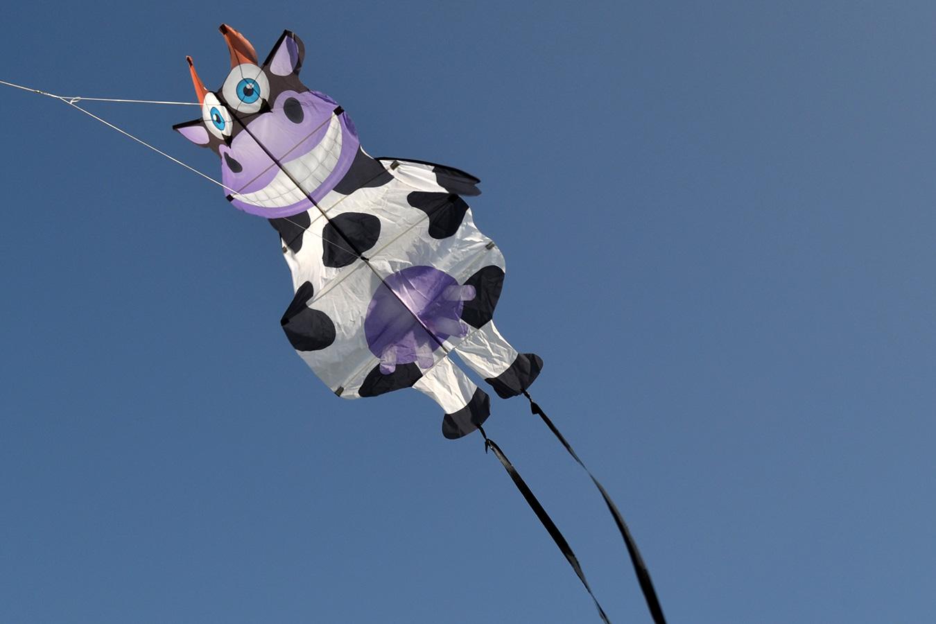 Танцующая Корова изображение 2