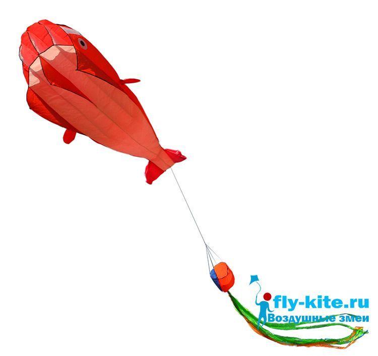 Змей воздушный Singing Whale red поющий кит красный, 2.2 метра [ZBSWR]