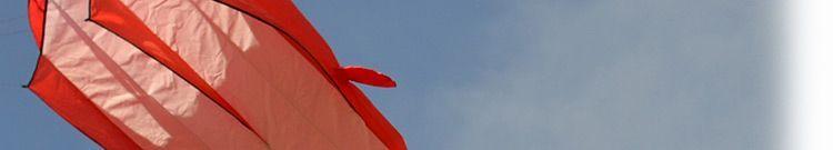 Красный поющий кит изображение 2