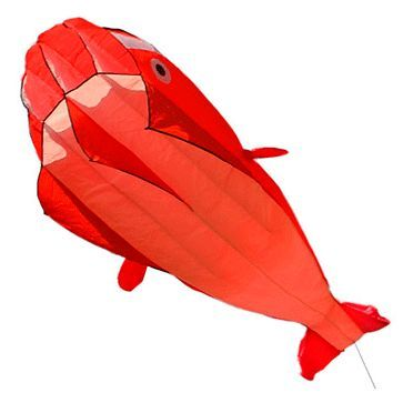 Красный поющий кит