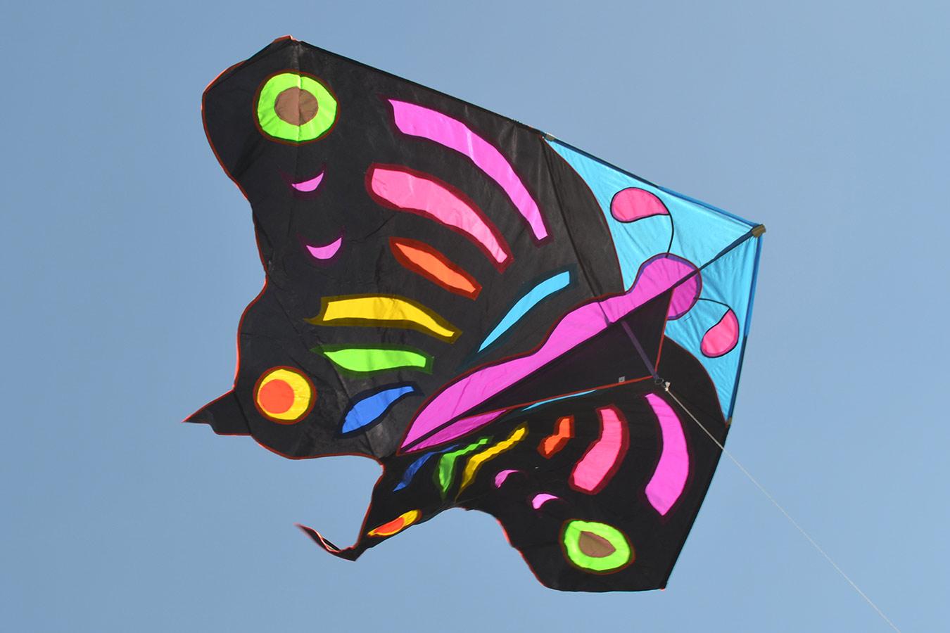 Огромная бабочка изображение 0