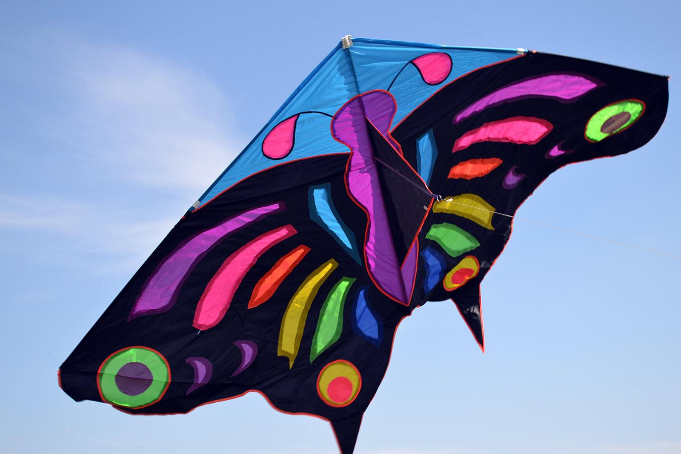 Огромная бабочка изображение 1