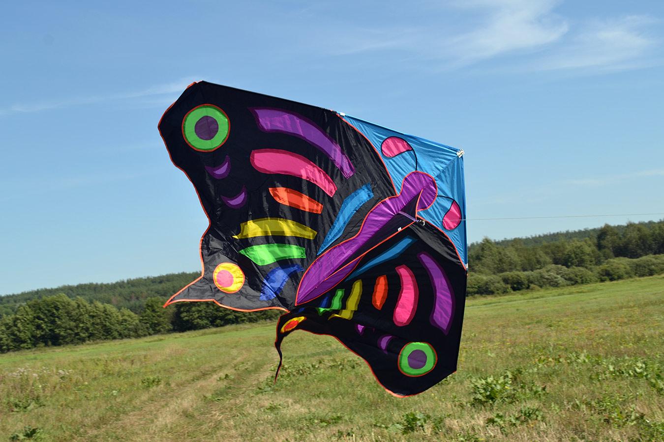 Огромная бабочка изображение 2