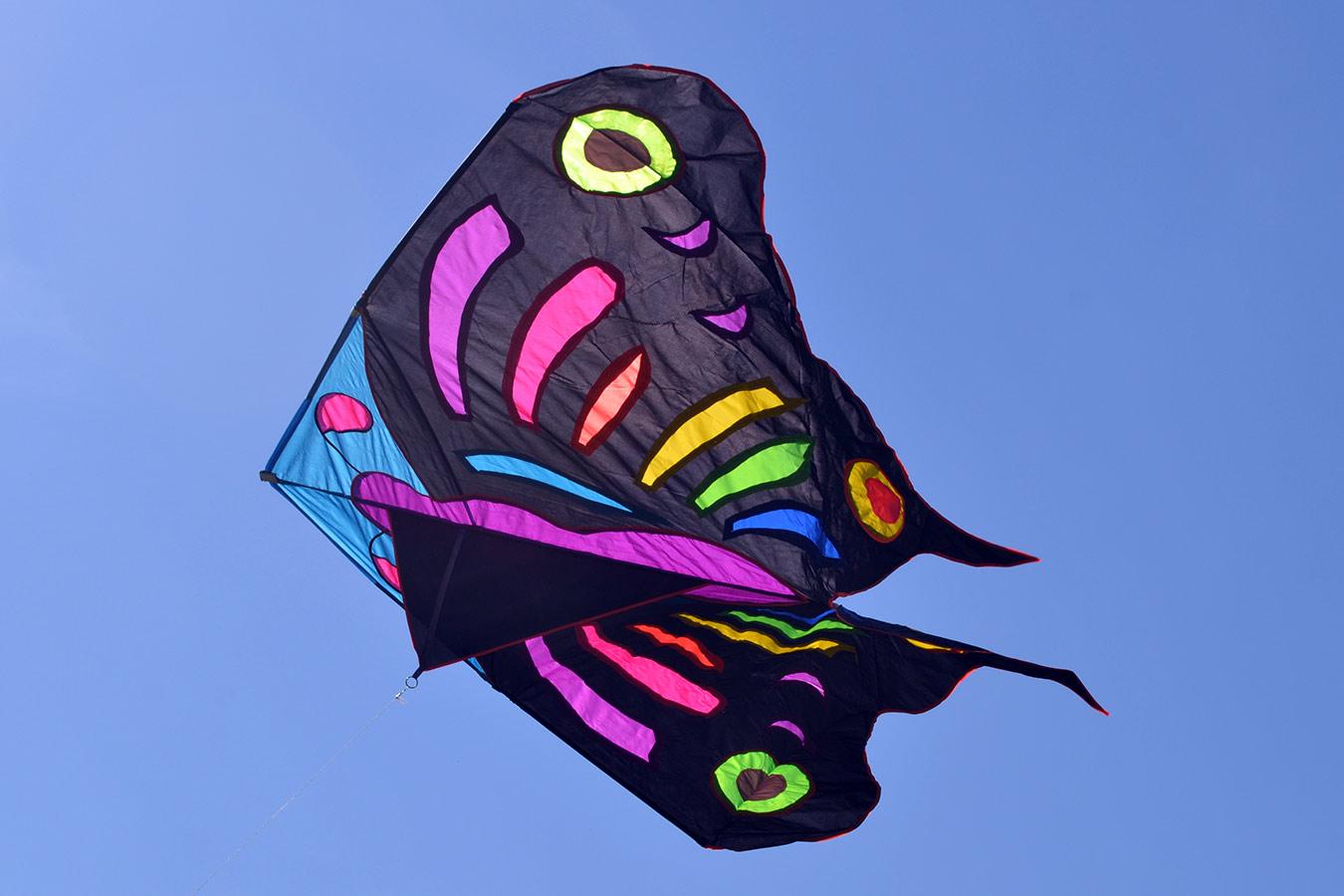 Огромная бабочка изображение 3