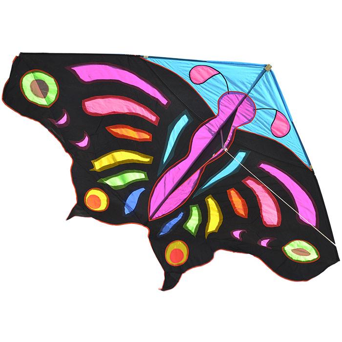 Огромная тропическая бабочка