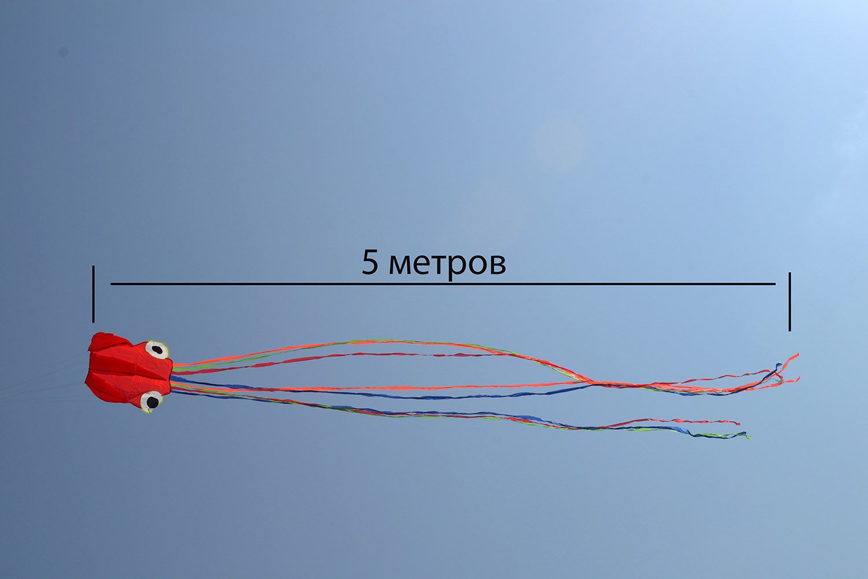 Оранжевый осьминог изображение 1