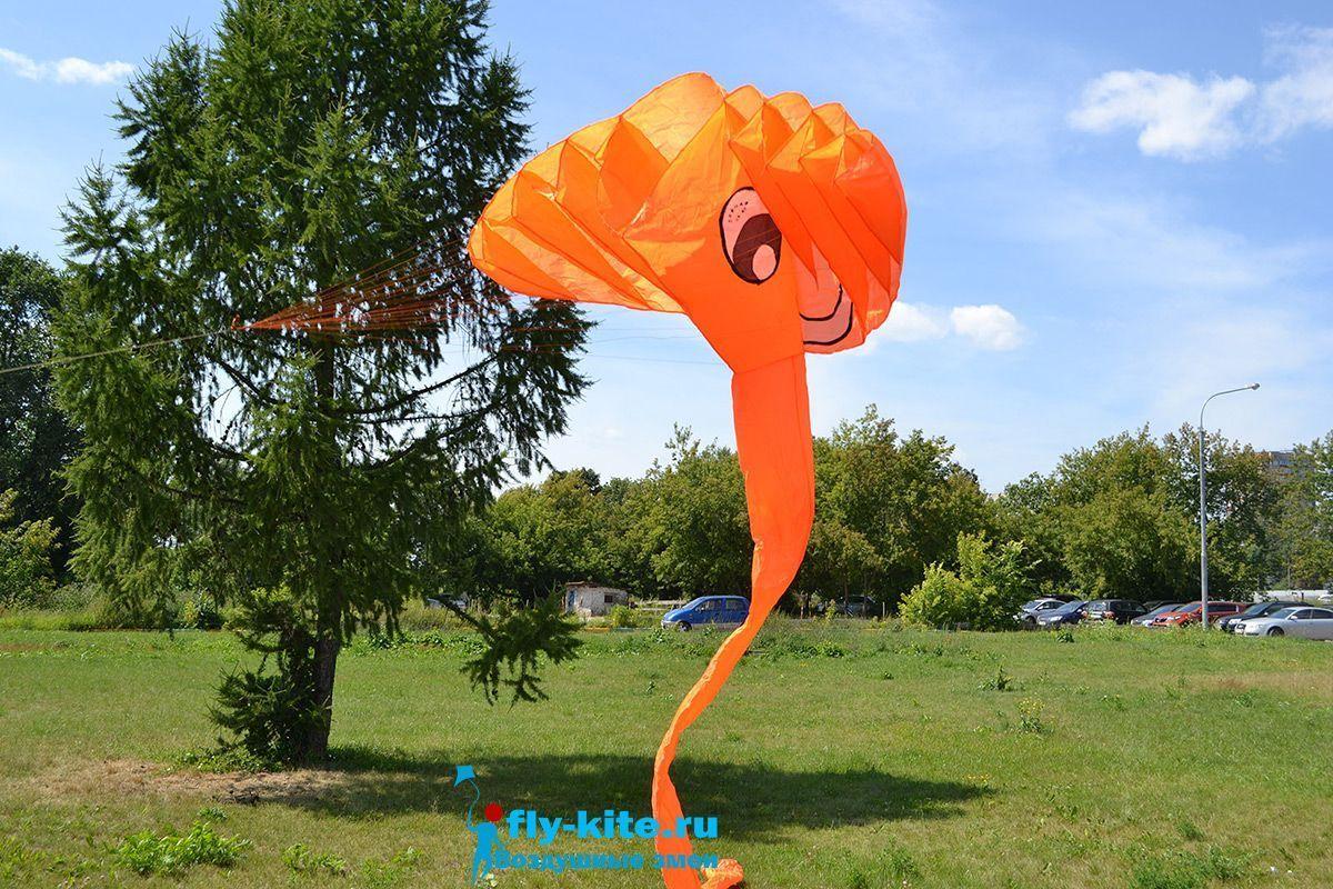 Оранжевый слон изображение 0