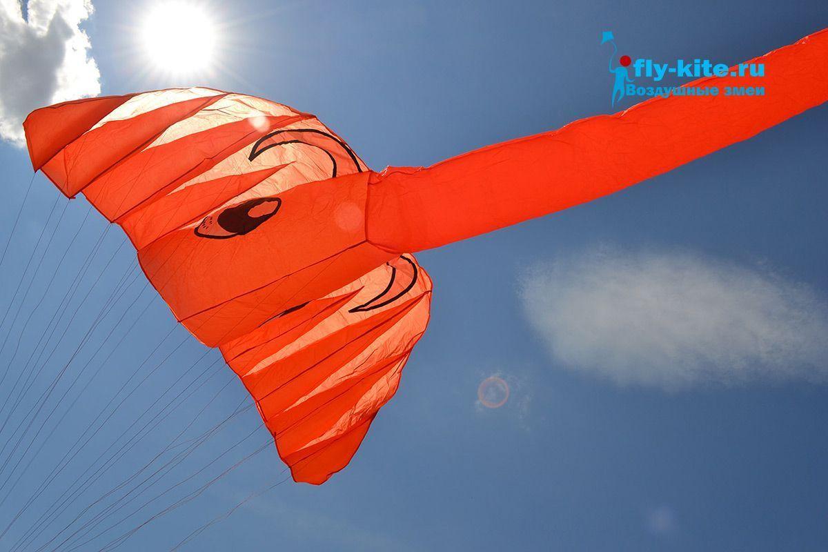 Оранжевый слон изображение 1