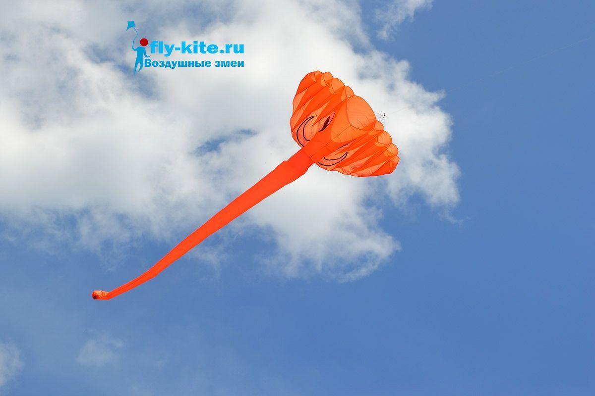 Оранжевый слон изображение 3