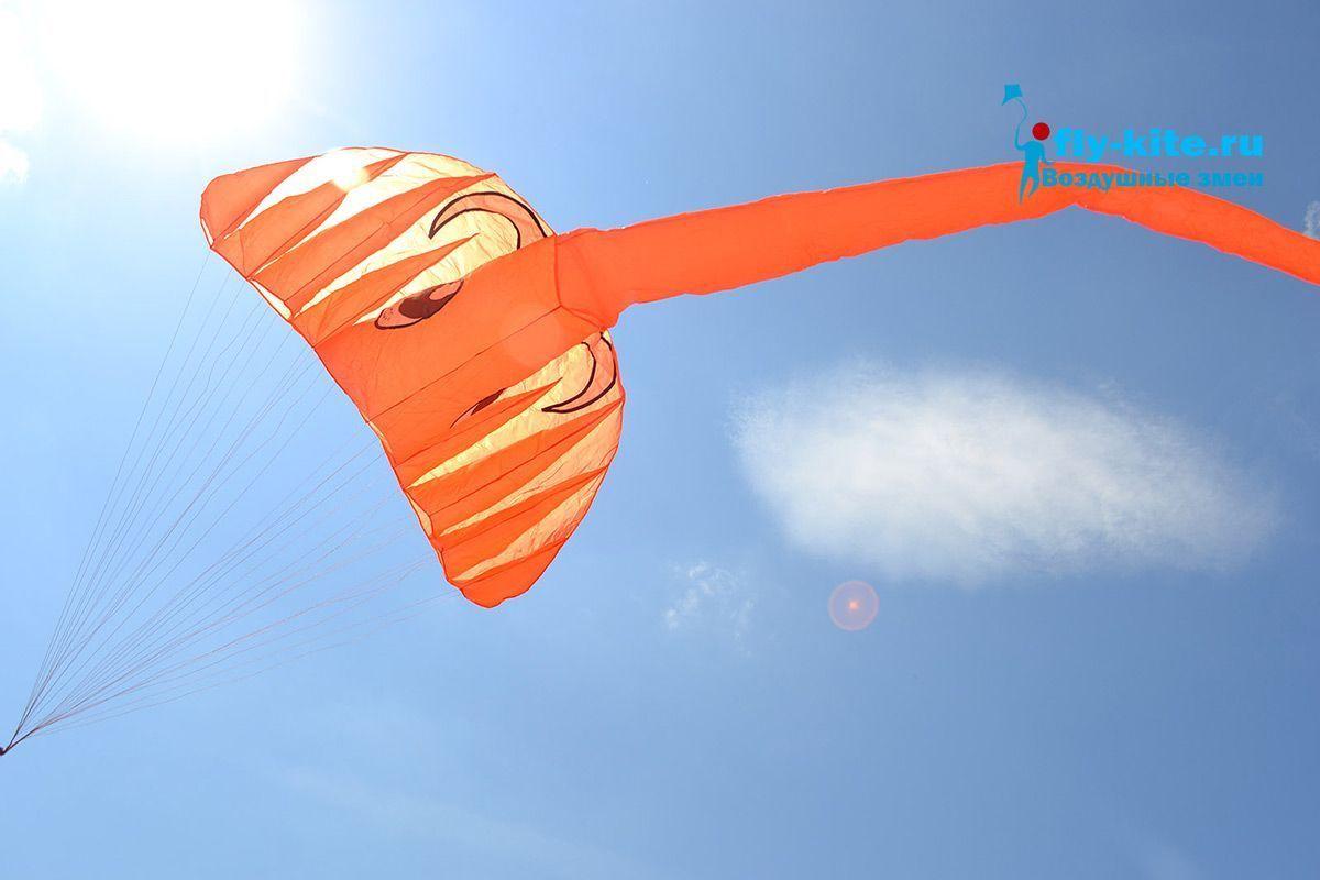 Оранжевый слон изображение 4