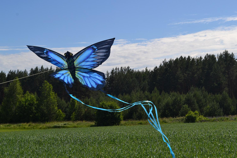 Синяя Пелеида изображение 0