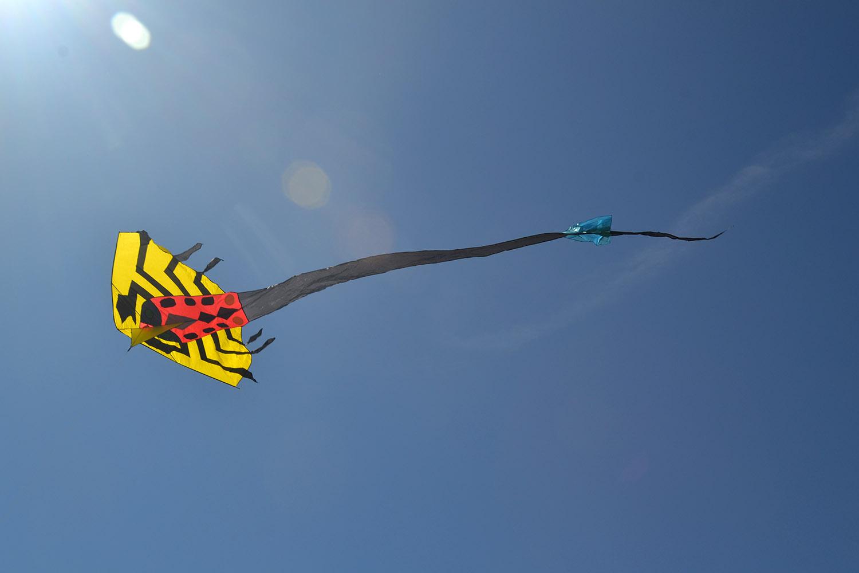 Скорпион изображение 3