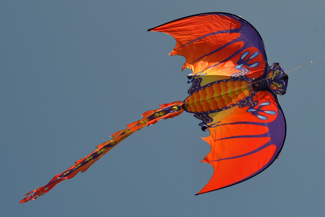 Огненная Виверна изображение 2
