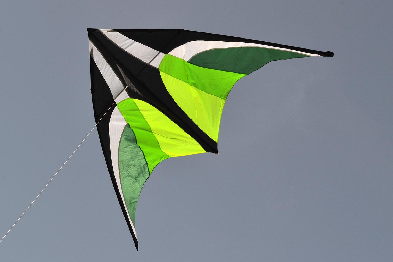 Зеленый Вьюн изображение 2