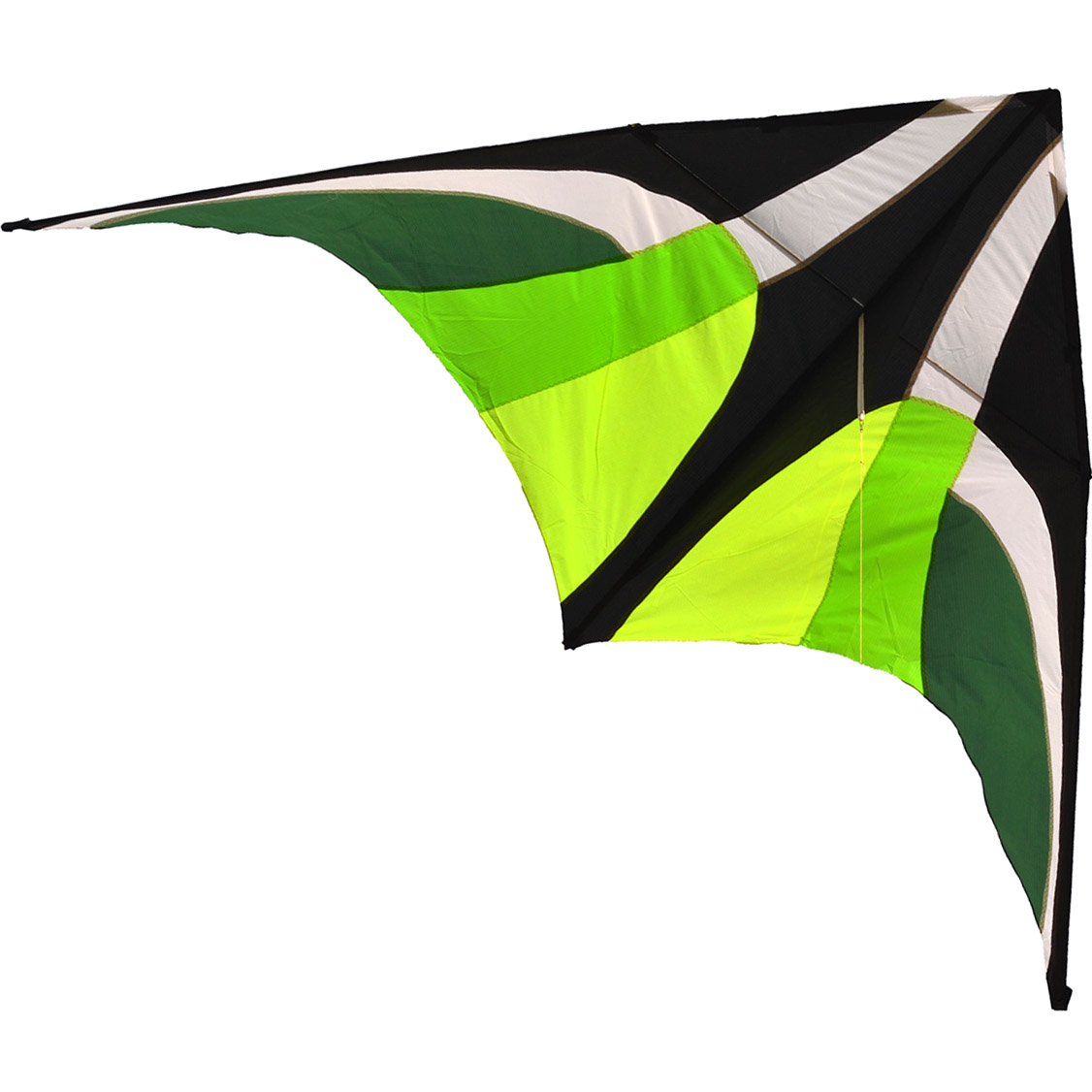 Зеленый Вьюн