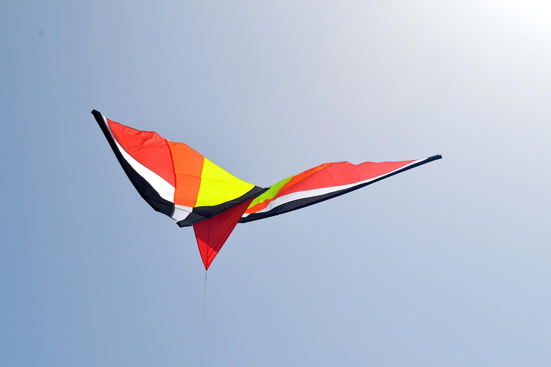 Красный Вьюн изображение 3