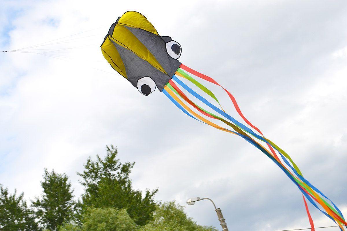 Цветной осьминог изображение 1