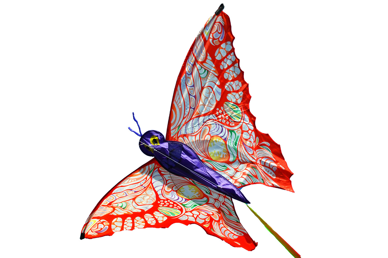 Бабочка Аполлон, воздушный змей [ZB745]