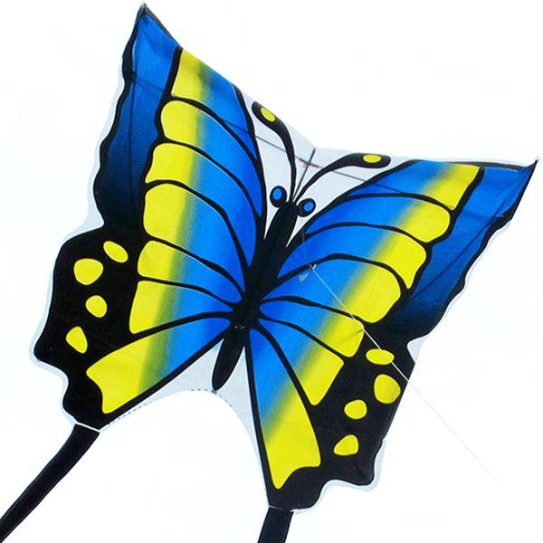 Синий Аргус