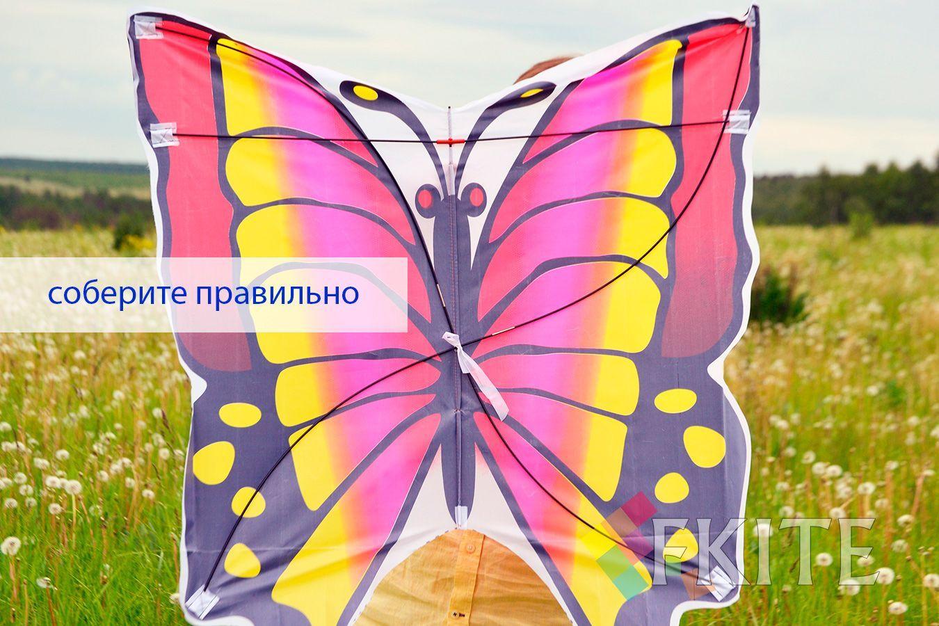 Розовый Аргус изображение 4