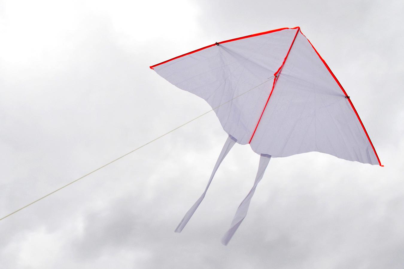 Бабочка для творчества изображение 0
