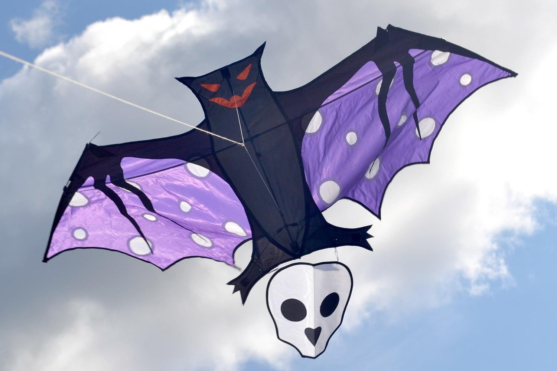 Эполетовый крылан изображение 4