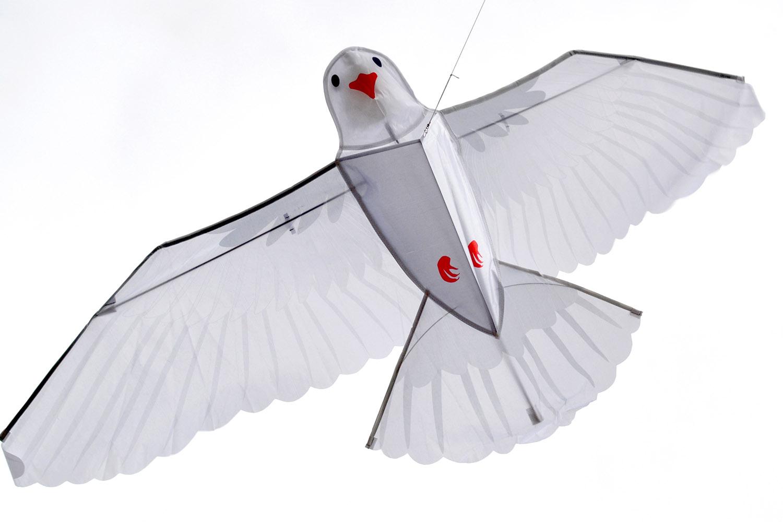 Белый голубь изображение 2