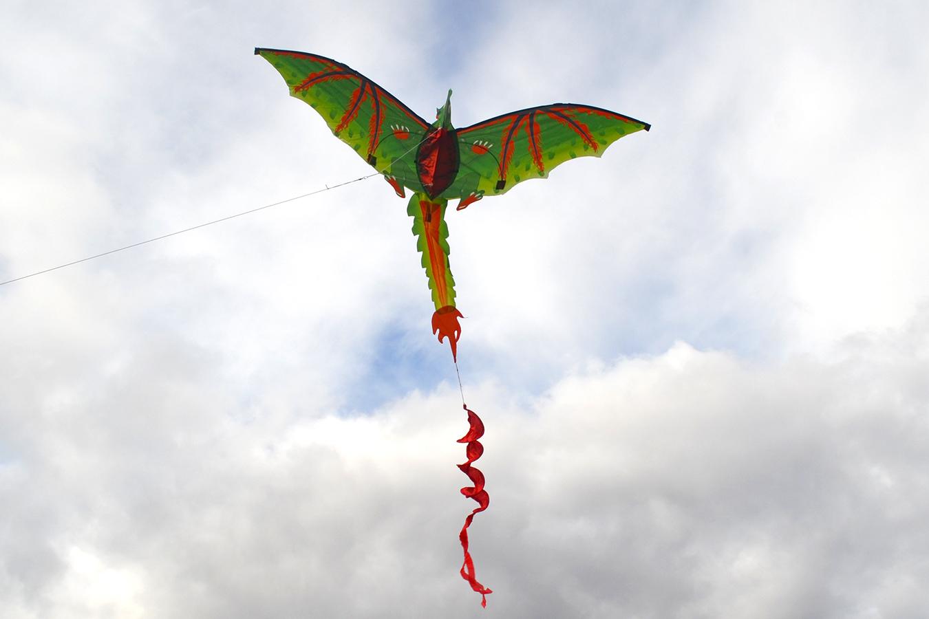 Дракончик Эллиот 3D изображение 1
