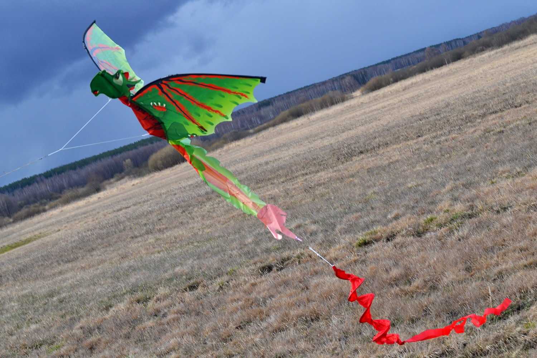 Дракончик Эллиот 3D изображение 4