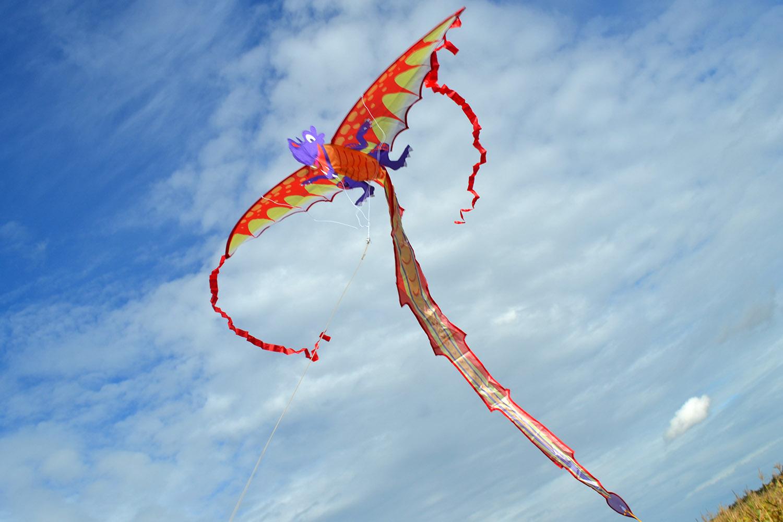Дракончик Спайро 3D изображение 4