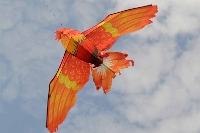 Огненный петушок изображение 0