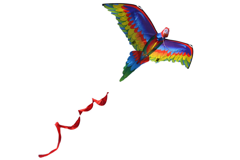 Птица Говорун 3D, воздушный змей [ZB576]