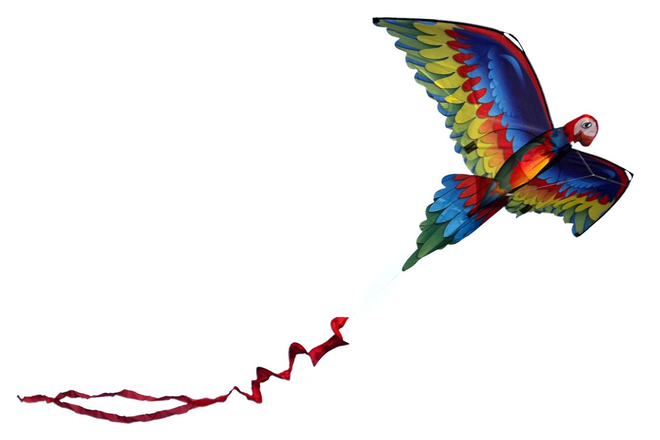 Птица Говорун 3D изображение 6