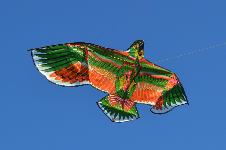 Зеленый Какаду изображение 2