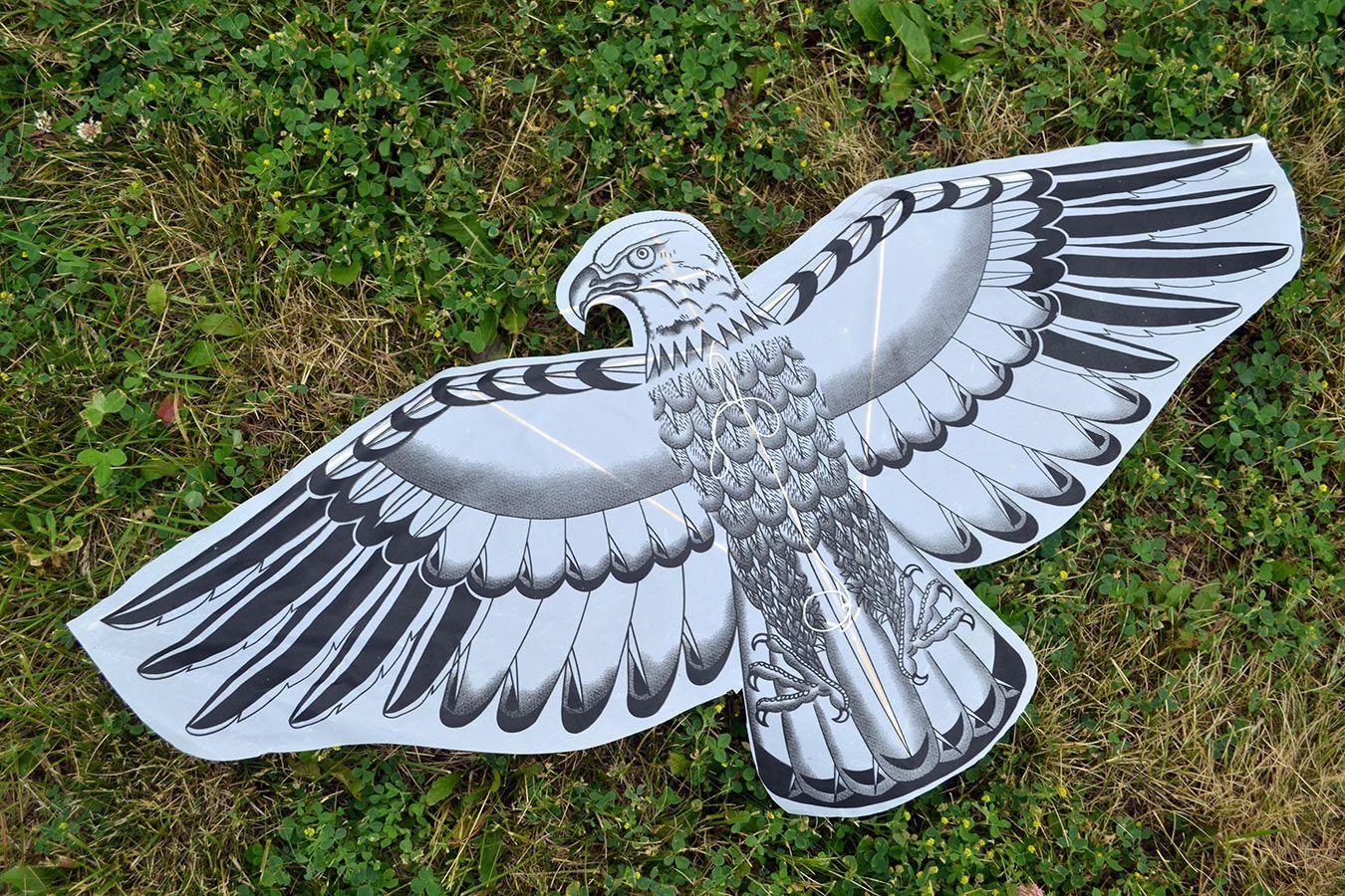 Орел изображение 0