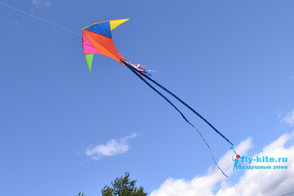 Колибри изображение 1