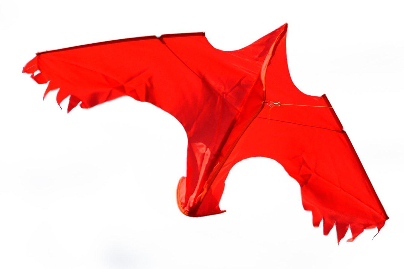Змей воздушный хитрая Ворона [ZB7XV]