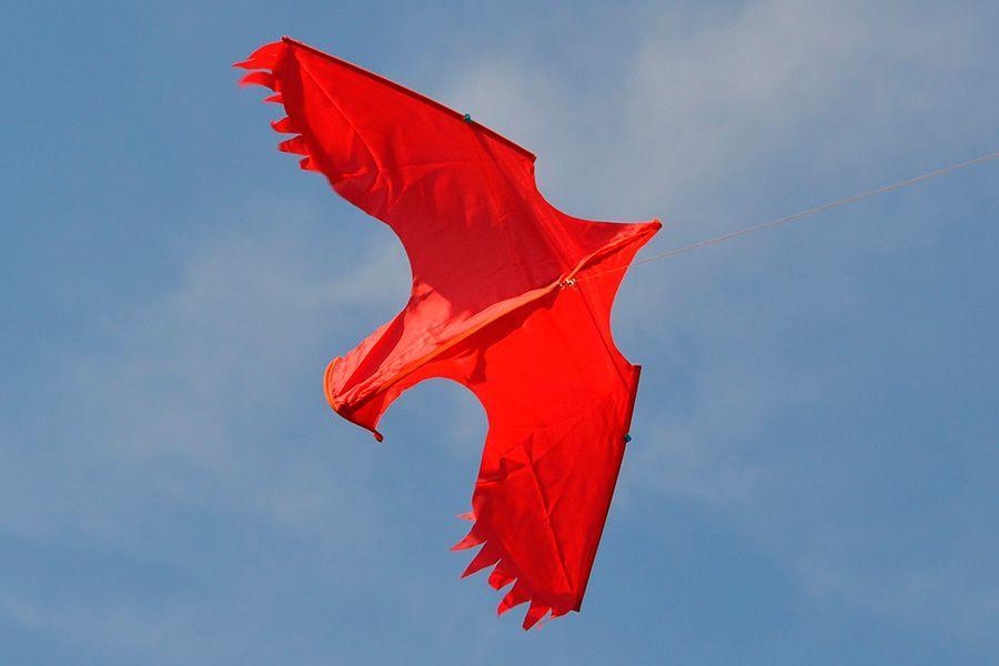Ворона изображение 1