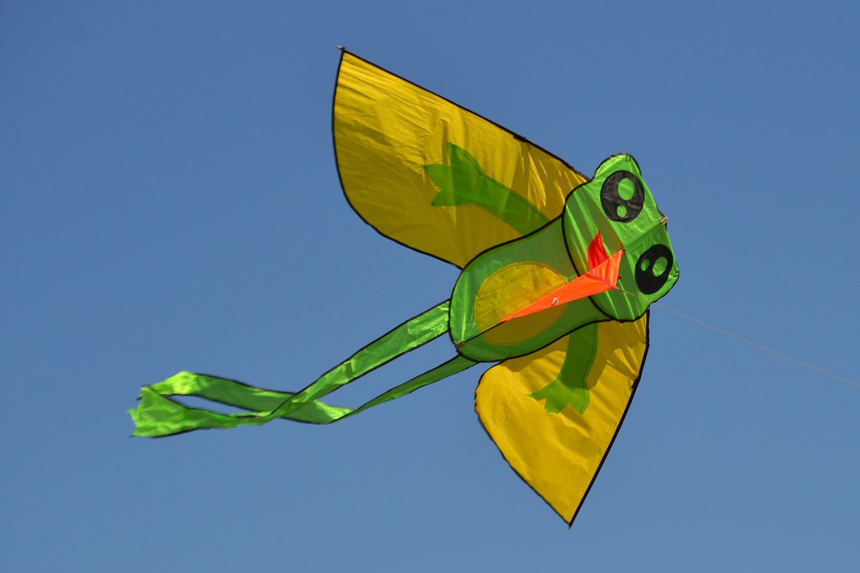 Лягушонок изображение 3