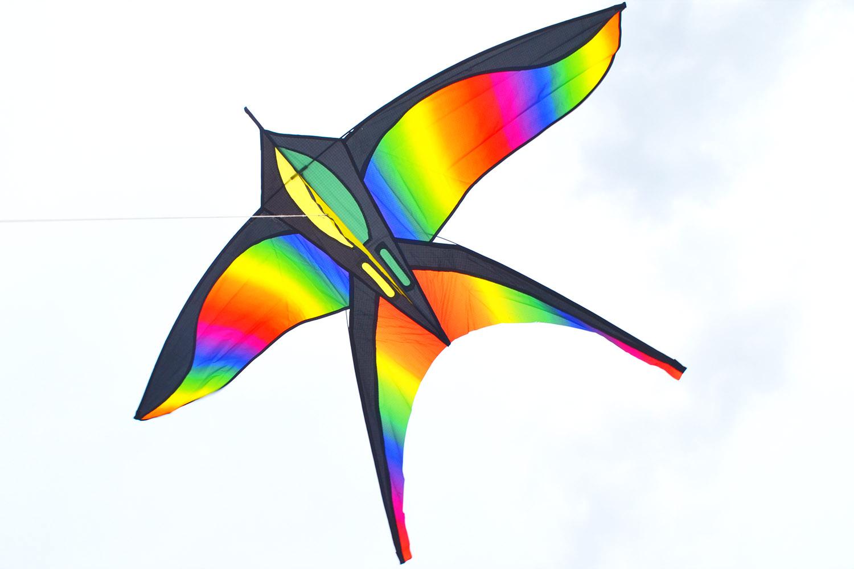 Цветная Ласточка изображение 1