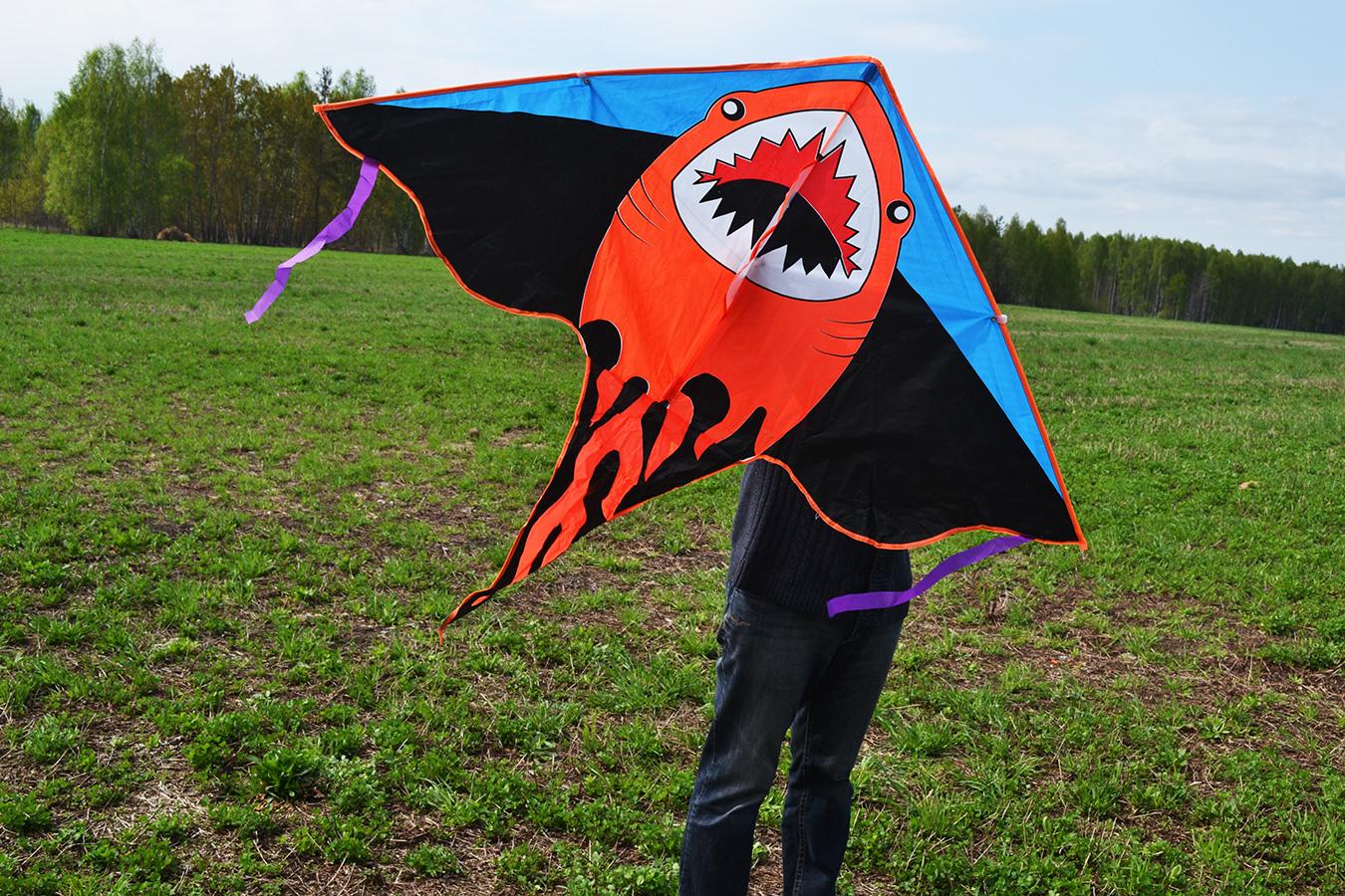 Лисья акула изображение 2