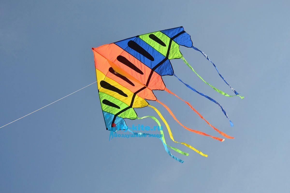 Небесная медуза изображение 0